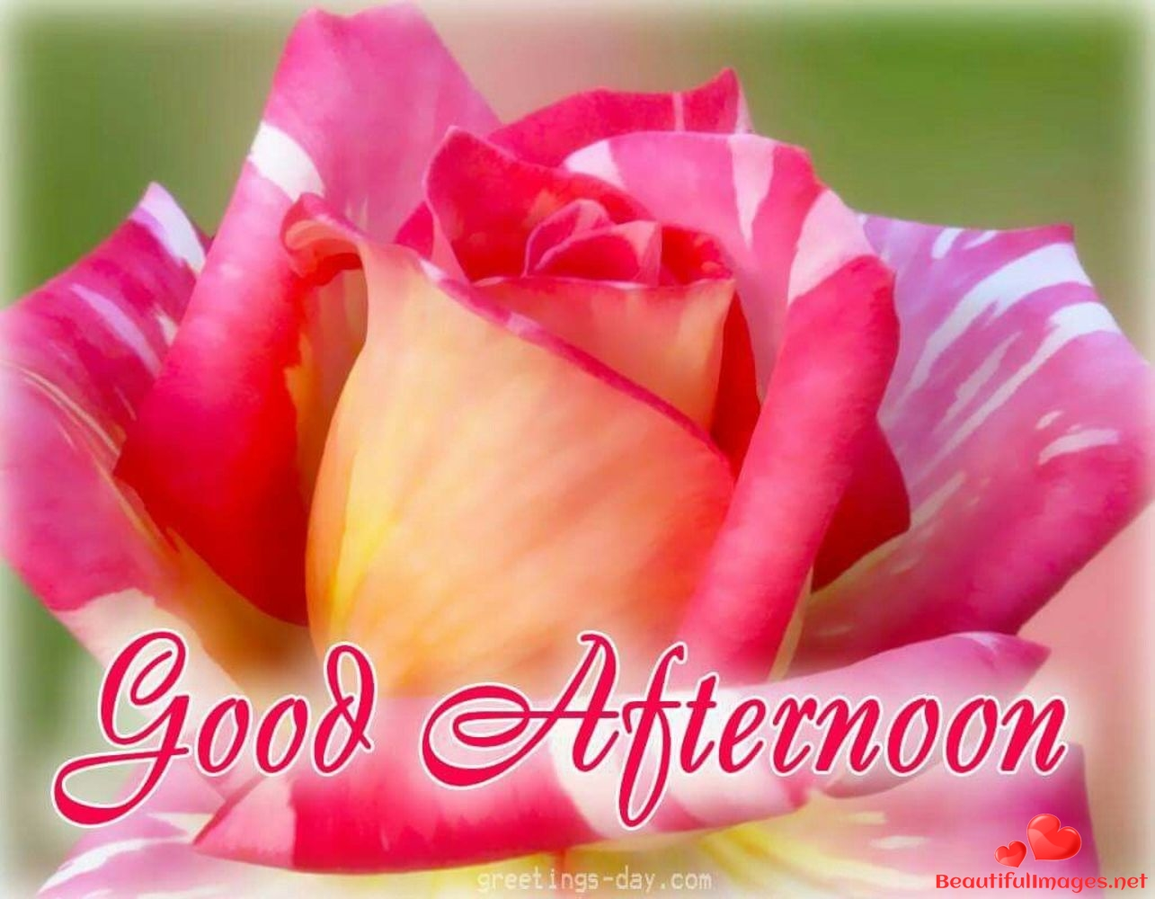 Good-Afternoon-Images-Whatsapp-Nice-Pics-28