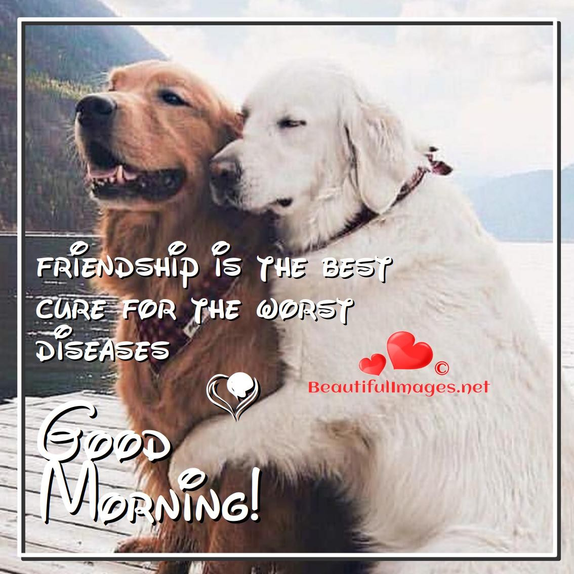 Good-Morning-Friendship-Images-Facebook-Whatsapp-Nice
