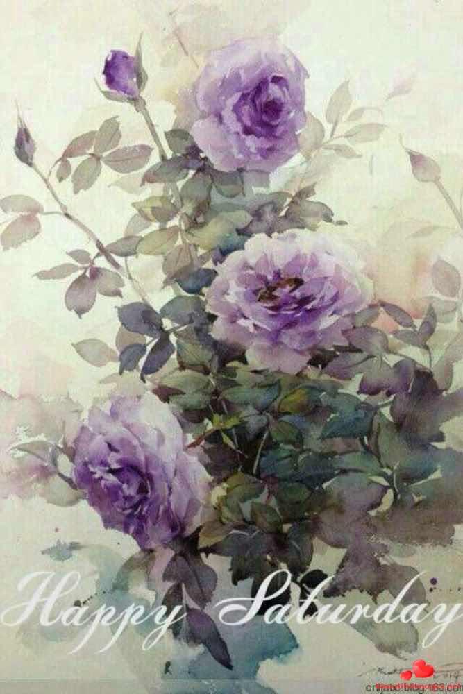 Good-morning-happy-saturday-facebook-whatsapp-images-nice-691