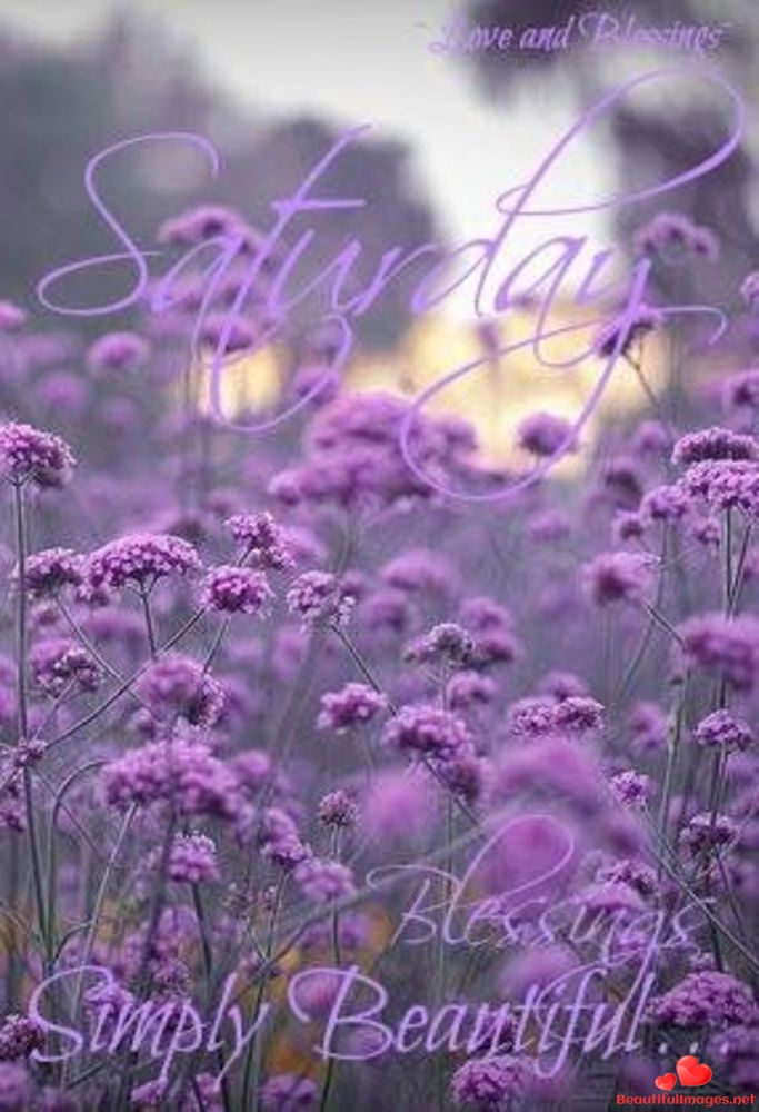 Good-morning-happy-saturday-facebook-whatsapp-images-nice-694