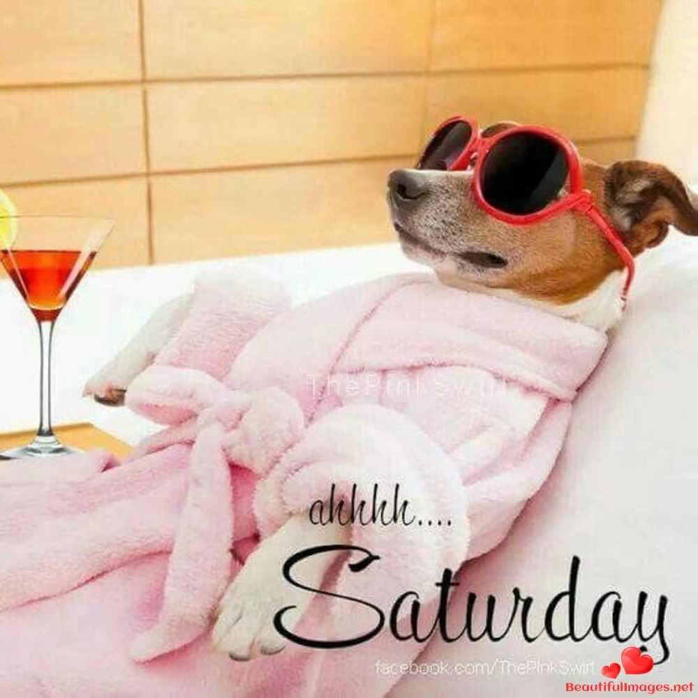 Good-morning-happy-saturday-facebook-whatsapp-images-nice-698