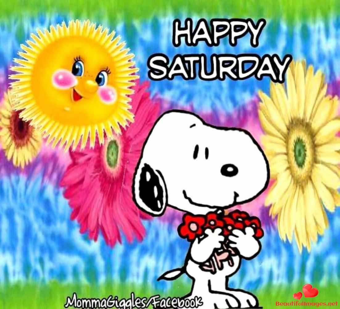Good-morning-happy-saturday-facebook-whatsapp-images-nice-723