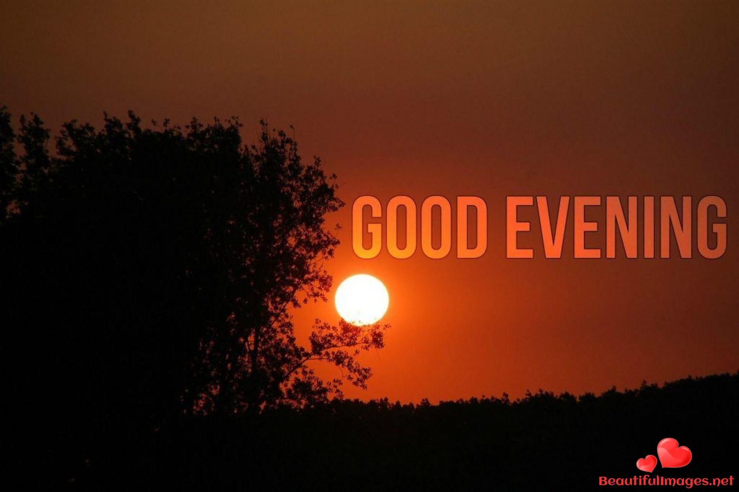 Images-Good-Evening-Nice-Pictures-122