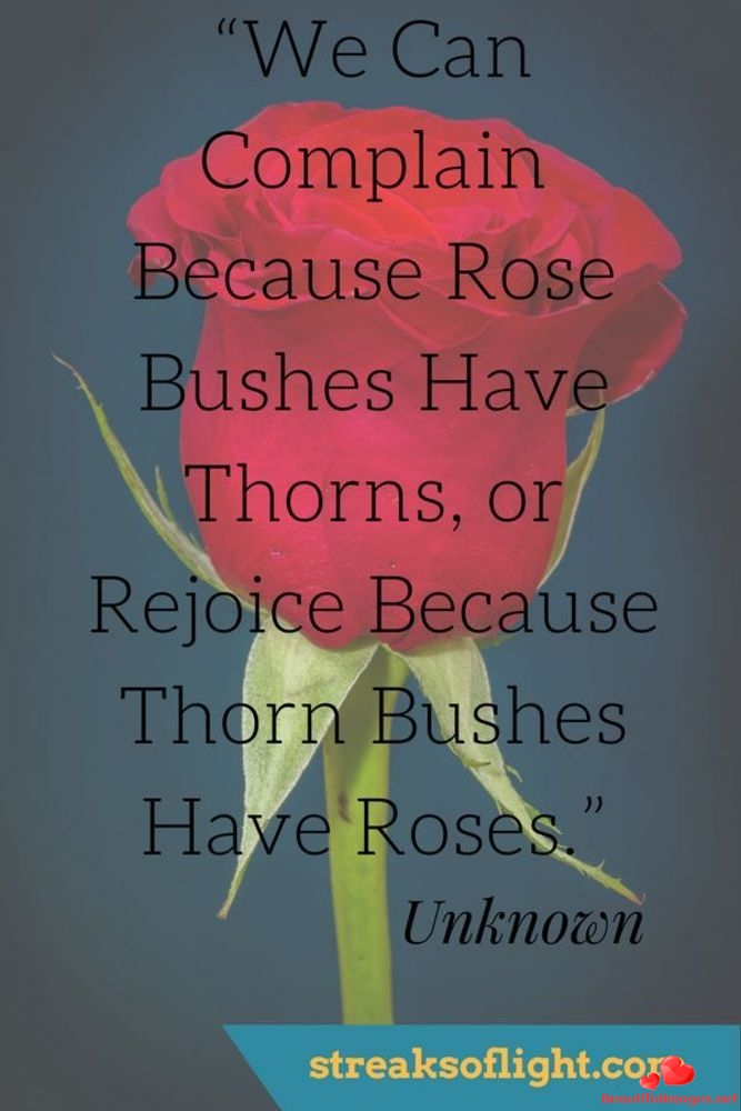 Quotes-Sayings-Images-Photos-Motivation-732