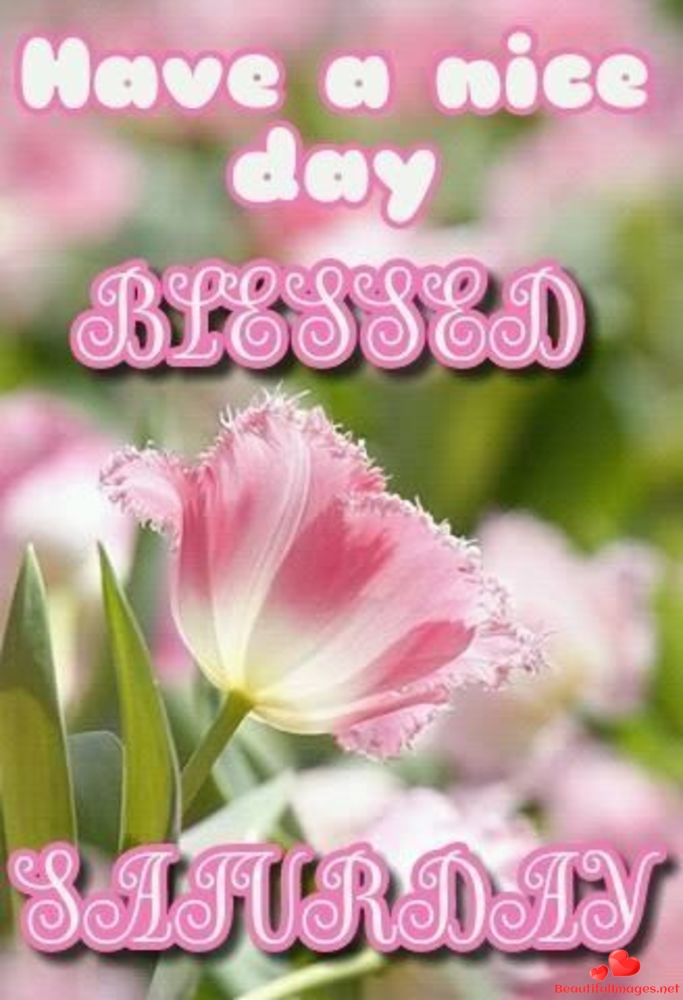 Saturday-good-morning-beautiful-images-whatsapp-551