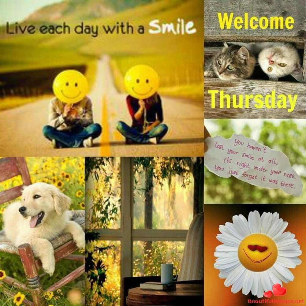 Thursday-434