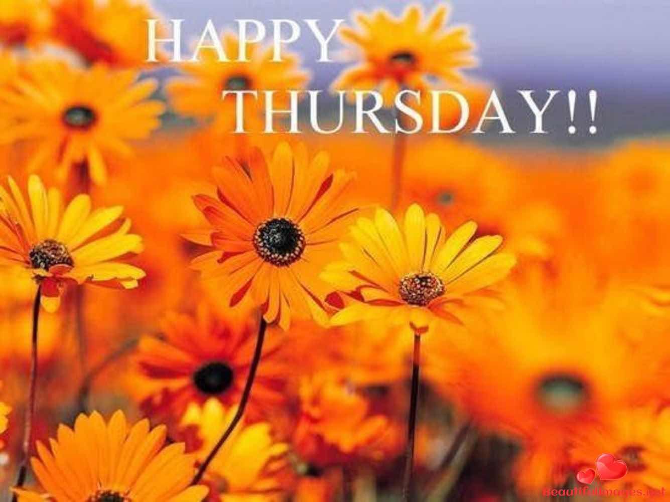 Thursday-479