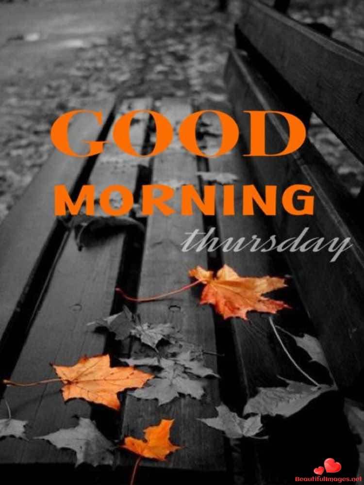 Thursday-486