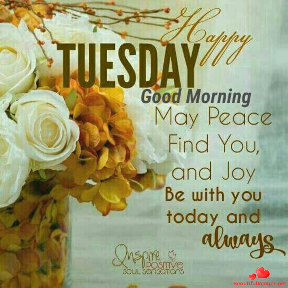 Tuesday-Blessings-Quotes-Whatsapp-55