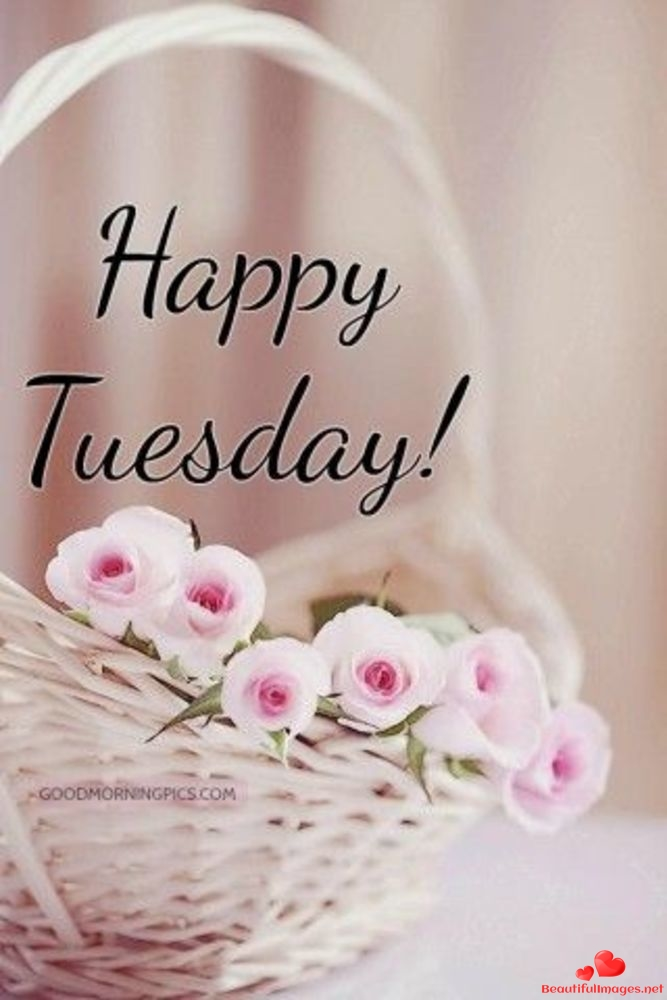 Tuesday-Good-Morning-Images-Whatsapp-232