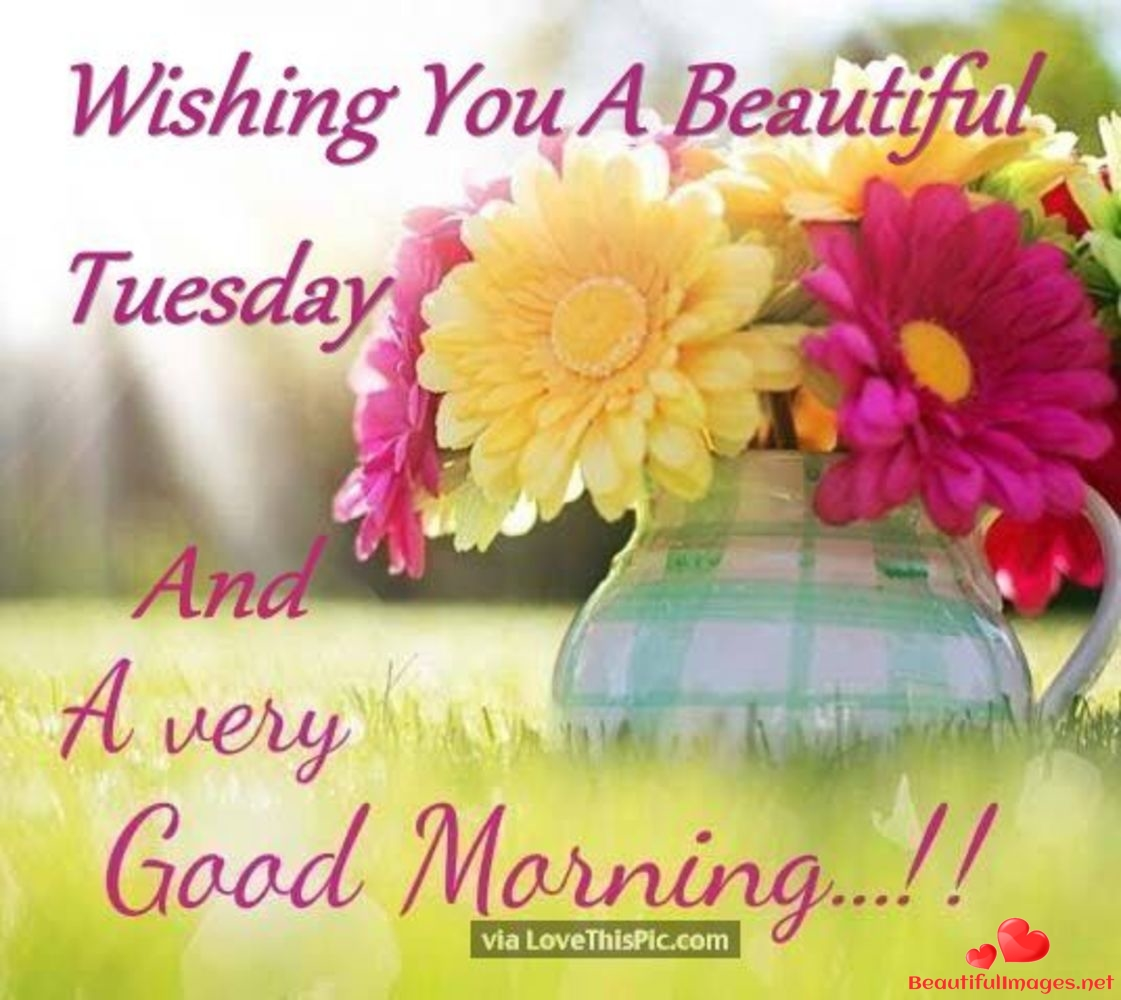 Tuesday-Good-Morning-Images-Whatsapp-252