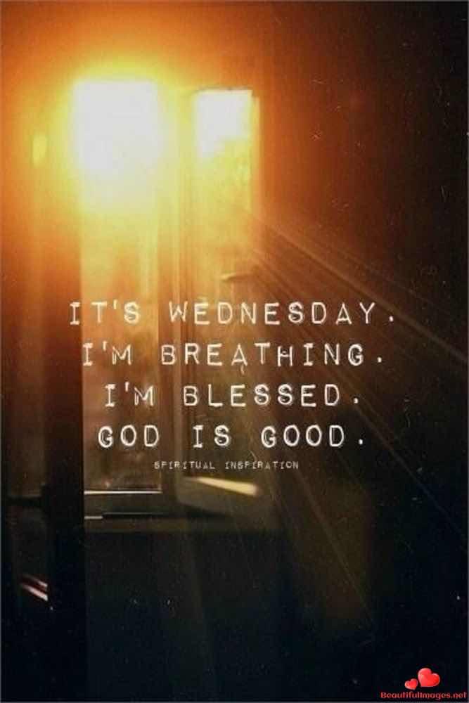 Wednesday-196