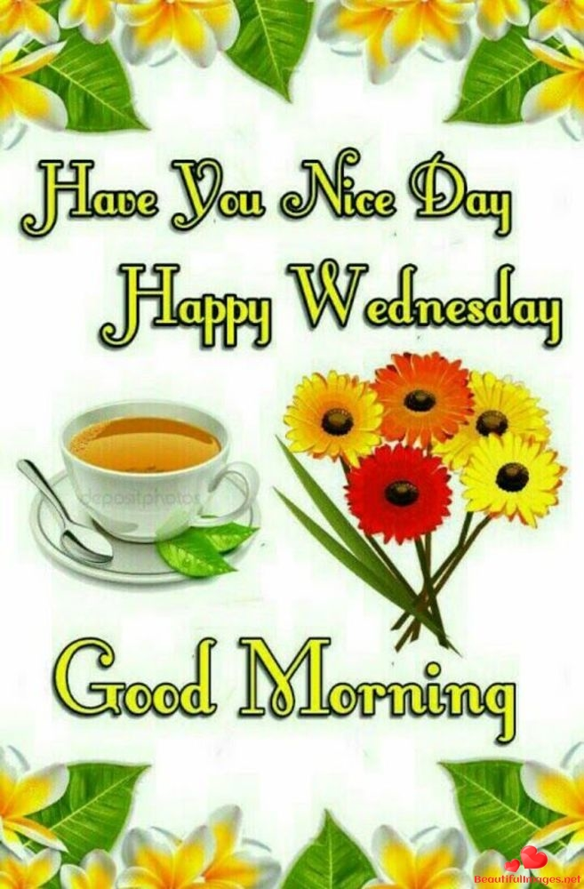 Wednesday-Images-Facebook-Whatsapp-302